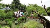 103年6月30日宜蘭縣蘇澳國中七年級師生到大安藥園休閒農場進行戶外參訪活動:DSC05411.JPG