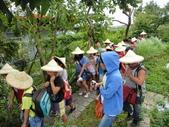 大佑安親班快樂的戶外教學活動於8/7在大安藥園休閒農場圓滿結束:DSC06932.JPG