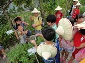 大佑安親班快樂的戶外教學活動於8/7在大安藥園休閒農場圓滿結束:DSC06934.JPG