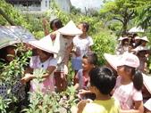 上晉安親班小朋友最盼望的戶外教學終於8/8在大安藥園休閒農場快樂結束:DSC07154.JPG