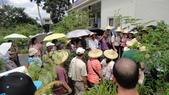 2014年6月8日板橋中醫社大170人到大安藥園休閒農場進行參訪活動:DSC04843.JPG