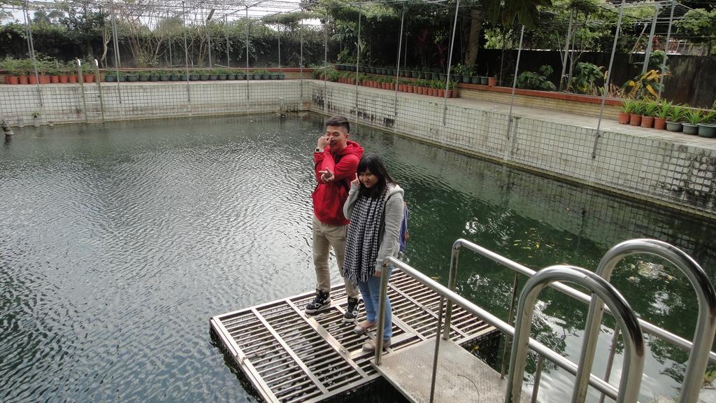 103年12月17佛光大學未來與樂活產業學系到大安藥園休閒農場進行參訪活動:DSC07830.JPG