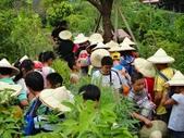 大佑安親班快樂的戶外教學活動於8/7在大安藥園休閒農場圓滿結束:DSC06937.JPG