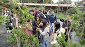103年12月17佛光大學未來與樂活產業學系到大安藥園休閒農場進行參訪活動:DSC07843.JPG