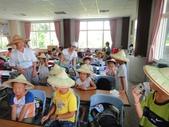 大安藥園休閒農場的研究夥伴:新教育文理補習班於2012.07.27蒞臨研究學習中草藥:DSC06745.JPG