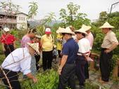 宜蘭縣藥用植物學會戶外研習活動於6/9圓滿結束:DSC05626.JPG