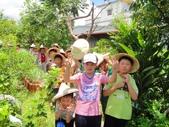 大安藥園休閒農場的研究夥伴:新教育文理補習班於2012.07.27蒞臨研究學習中草藥:DSC06765.JPG