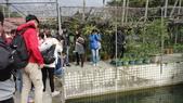 103年12月17佛光大學未來與樂活產業學系到大安藥園休閒農場進行參訪活動:DSC07826.JPG