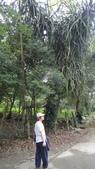 2014年6月15日宜蘭縣藥用植物學會與大安藥園休閒農場到宜蘭大學實驗林場進行戶外參觀教學活動:DSC05109.JPG
