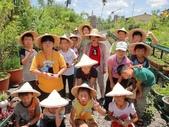 大安藥園休閒農場的研究夥伴:新教育文理補習班於2012.07.27蒞臨研究學習中草藥:DSC06768.JPG