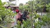 103年12月17佛光大學未來與樂活產業學系到大安藥園休閒農場進行參訪活動:DSC07842.JPG