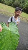 2014年6月15日宜蘭縣藥用植物學會與大安藥園休閒農場到宜蘭大學實驗林場進行戶外參觀教學活動:DSC05117.JPG
