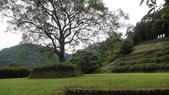 2014年6月15日宜蘭縣藥用植物學會與大安藥園休閒農場到宜蘭大學實驗林場進行戶外參觀教學活動:DSC05120.JPG
