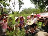 小太陽補習班快樂的戶外教學活動在大安藥園休閒農場圓滿結束-2012.08.09:DSC07264.JPG