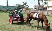 大皮蛋騎馬營20090920:DSC04774.jpg