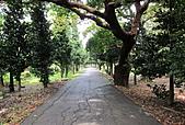 101006 恆春東半島:096--墾丁公園(恆春鎮).jpg