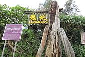 101006 恆春東半島:081-龍坑自然生態保護區(恆春鎮).jpg