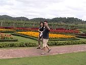 2008泰無聊PART4:銀湖葡萄園