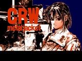 Game:CRW 鎮暴特遣隊