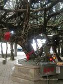 澎湖旅遊:CIMG0708.JPG