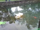 11-11-12台中居仁國中、台中公園湖心亭:P12-11-11_15.36.jpg