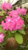 14-05-12杉林溪、斗六雅聞峇里海岸觀光工廠:DSC_2538.jpg