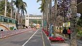14-02-21臺灣燈會在南投&臺中燈會的主燈:DSC_1974.jpg