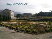 14-11-09&13銅鑼賞杭菊:DSC_3934.jpg