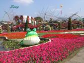 14-11-10新社花海:DSC_3809.jpg