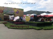 15-11-09新社花海:DSC_6698.jpg