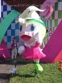 15-11-09新社花海:DSC_6619.jpg