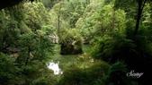 14-05-12杉林溪、斗六雅聞峇里海岸觀光工廠:DSC_2508.jpg