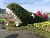 15-11-09新社花海:DSC_6612.jpg