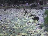 11-10-17沙鹿登山步道+台中都會公園:P17-10-11_11.14.jpg