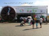 15-11-09新社花海:DSC_6677.jpg