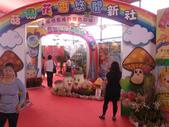 14-11-10新社花海:DSC_3792.jpg