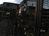 11-08-13豐原心鎖橋:P13-08-11_18.39[2].jpg