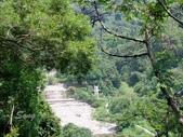 12-08-27大坑四號三號步道聯走:遠看步道口的長青橋