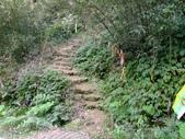 11-10-31馬拉邦山、后里月眉糖廠、后里千年大樟樹:DSCF7314.jpg