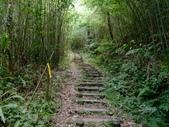 11-10-31馬拉邦山、后里月眉糖廠、后里千年大樟樹:DSCF7318.jpg