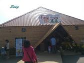 14-11-10新社花海:DSC_3853.jpg