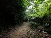11-10-31馬拉邦山、后里月眉糖廠、后里千年大樟樹:DSCF7319.jpg