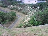 08-11-17白米甕砲台、仙洞巖、佛手洞:白米甕砲台一角