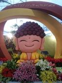 15-11-09新社花海:DSC_6645.jpg