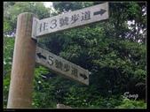 12-06-18 大坑三號步道:DSCF0016.jpg