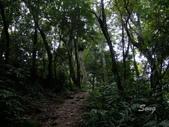 11-10-31馬拉邦山、后里月眉糖廠、后里千年大樟樹:DSCF7329.jpg
