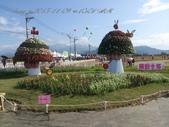 15-11-09新社花海:DSC_6675.jpg