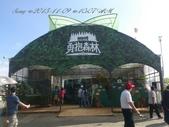 15-11-09新社花海:DSC_6678.jpg