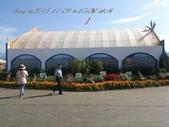 15-11-09新社花海:DSC_6671.jpg