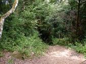 11-10-31馬拉邦山、后里月眉糖廠、后里千年大樟樹:DSCF7333.jpg